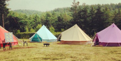 Baylily Bell Tents Glamping tent hire